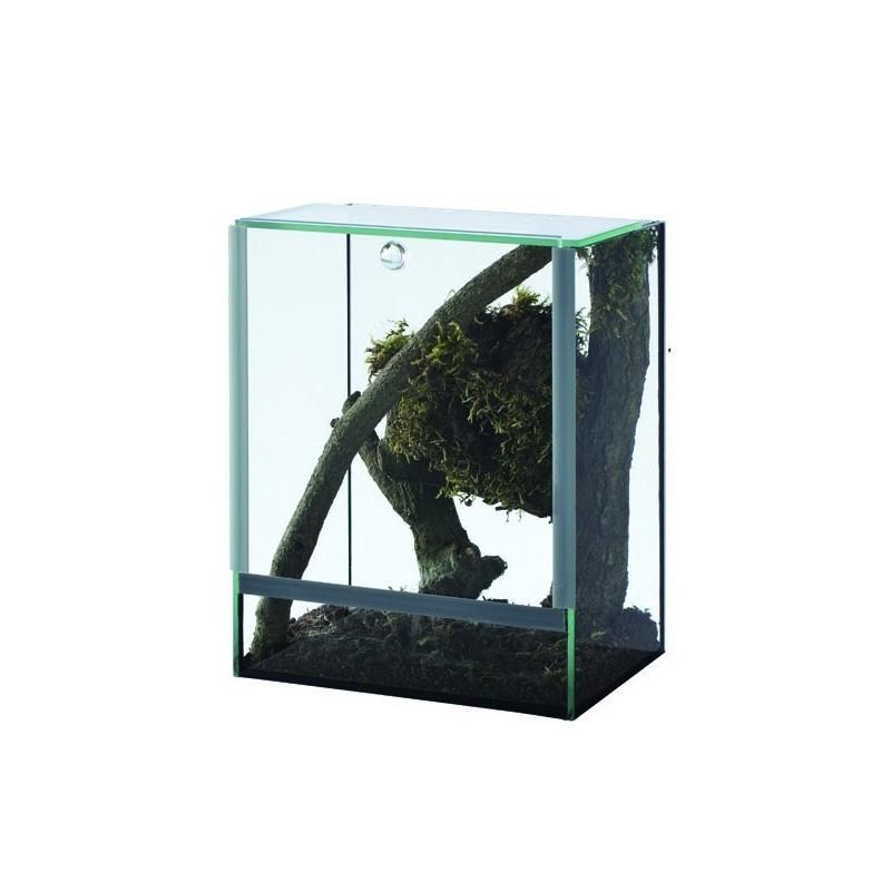 Terrarium en verre Terravie 15 x 15 x 20 cm