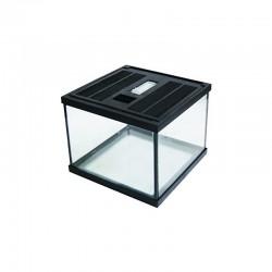 Terrarium verre easy terra 20 X 20 X 15 cm