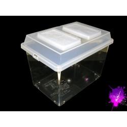 Luxury box moyenne 3.5 Litres
